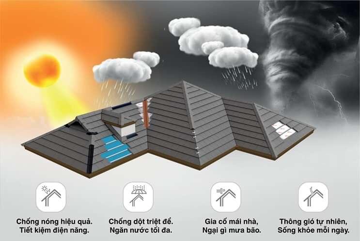 Các giải pháp đa dụng về mái scg